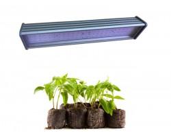 Фито светильник EmyLight LuxEco Original EcoMax светодиодный полный спектр 100 Вт для растений